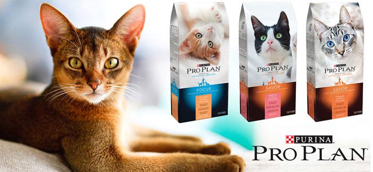 Проплан для котов отзывы ветеринаров
