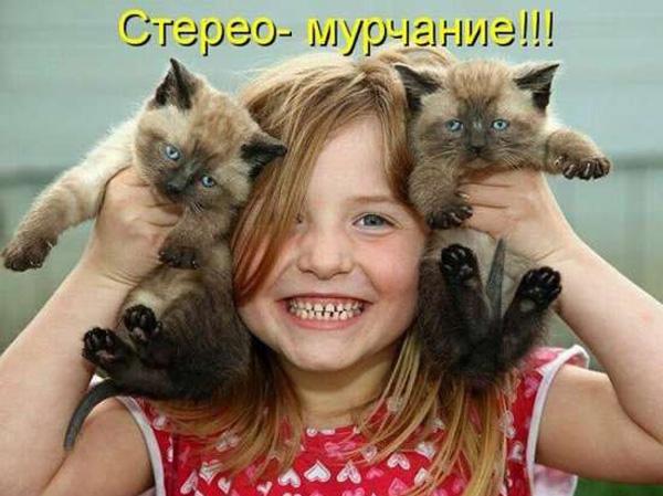 Котоматрица - 1 выпуск (10 фото)